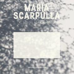 Maria Scarpulla / Campi di Colore - teaser Cards Against Humanity, Graphic Design, Visual Communication