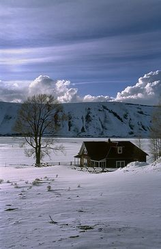 Wyoming Winter Landscape.........perfect spot for retiring!!