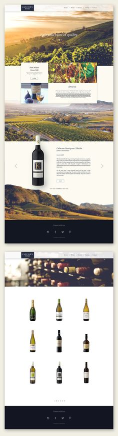 Cape town wines web dribbble
