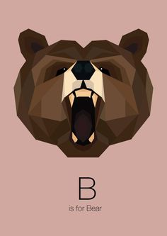 Animal Alphabet on Behance