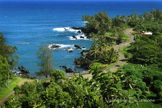 Road to Hana tour with Valley Isle Excursions.  Book a Maui tour with us to see the whole island; black sand beaches & lots of waterfalls too.