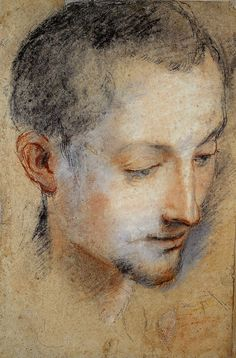 Federico Barocci  Young Man  Black, red, white and pink chalks on discolored grey paper.  330 x 218mm  Lately, I've been researching Federico Barocci. His chalk lines are fascinating, harmonizing between the sharp and subtle -conveying a feeling of tenderness.    Federico Barocci  Red and black, ochre and brown chalks, heightened with white  250 x 211mm extended and made up to 308 x 246mm