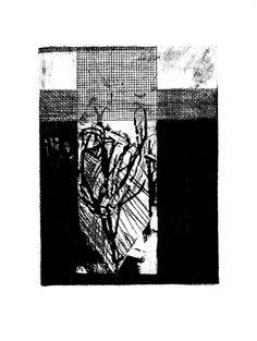 """The Olive"", aquatint and etching, 2013.- Ksenija Tomičić"