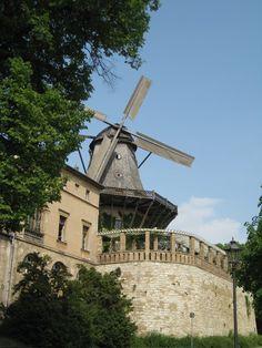 Potsdam - Windmühle