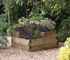 Caledonian Tiered Raised Bed | Forest Garden