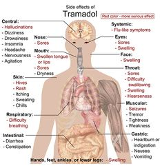tramadol side effects medications with alcohol