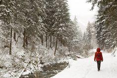 Liever een wintervakantie dan een zomervakantie? Vind je ook op de Vakantiebeurs - nog tot en met zondag. #photography #travelphotography #traveller #canon #canonnederland #canon_photos #fotocursus #fotoreis #travelblog #reizen #reisjournalist #travelwriter#fotoworkshop #willemlaros.nl #reisfotografie #landschapsfotografie #follow #kamperen #vakantiekriebels #campervaria #camperreismagazine #camping #caravan #camper #vivakamperen #moto73 #motorfiets #instalaros #vakantiebeurs #fb