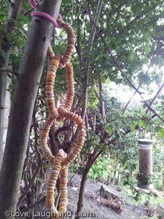 Threaded cereal bird feeders. Fab fine motor activity! Love, laugh and learn.