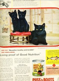 Vintage Puss N Boot Cat Food Ad from 1956 featuring three beautiful black cats