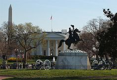 Friends Of Liberty: The Horses Asses Of Washington DC...