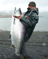 Kodiak Combos- all gear provided, fishing or hunting any month of the year. Come feel the hype! #kodiak #alaska #fishing