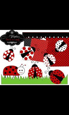 Various forms of lady bugs.