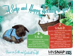 Accidents involving pets increase during the holiday season. Parties & guests can cause unintended harm to your rabbit. Minimize your rabbit's stress by secluding him in a quiet room or inside his pen in a quiet area while hosting guests. Maintain your rabbit's normal food schedule & portions during the holidays. Keep candies, cookies, & seasonal plants out of reach. Natural Christmas trees, pine cones (dried) & boughs (no pesticides, preservatives, flame retardants or colorants) are safe.