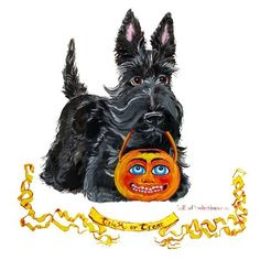 Scottish Terrier Trick or Treat : Tail End Productions by Cherry ONeill Irish Terrier, Scottish Terriers, Dog Halloween, Halloween Themes, Happy Halloween, Baby Otters, Cute Baby Animals, Wild Animals, Tiger Cubs