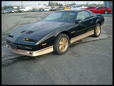 If I was a car I would be a 1986 Pontiac Firebird