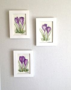 """""""Promises of Spring."""" These are three framed original #watercolor #paintings of Purple #Crocus.  With soft hues of greens and bold purples, these paintings are original @slgoldsberry"""
