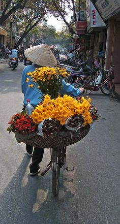 My Asian Favorit Vietnam, Flower Cart, Backyard Lighting, Photo Wall Collage, Morning Light, Color Inspiration, Art Inspo, Flower Power, Street Photography