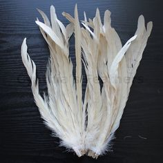 """25pcs 12-14"""" champagne rooster coque tail feathers for crafting, wedding, millinery supply, costume SKU: 7B41"""