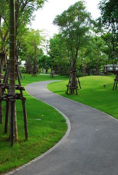 Baan Krung Thep Kritha Turns Flooded Area into Dynamic Landscape - Landscape Architects Network Landscaping Supplies, Landscaping Tips, Garden Landscaping, Different Plants, Types Of Plants, Landscape Architecture, Landscape Design, Flood Areas, Jogging Track
