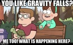 When I meet someone who is obsessed with gravity falls