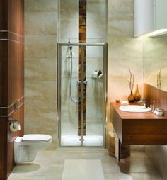 Small Bathroom Design Pictures