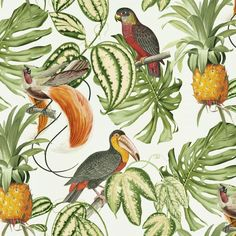 From the Erismann Paradiso collection is this exotic and colourful tropical jungle design. Birds of paradise, love birds and pineapples feature in this outlandish flora wallpaper. It's paste the wall too making it quick and easy to hang. Pineapple Wallpaper, Tropical Wallpaper, Bird Wallpaper, Green Wallpaper, Modern Wallpaper, Wallpaper Online, Wallpaper Samples, Animal Wallpaper, Bathroom Wallpaper