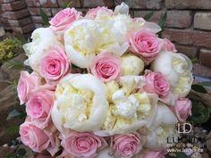 Svatba pivoňky Rose, Flowers, Plants, Pink, Plant, Roses, Royal Icing Flowers, Flower, Florals