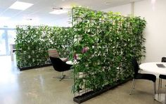 Image result for cool office fitouts
