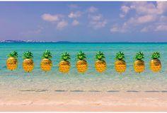 Gray Malin, Bermuda Pineapples on OneKingsLane.com