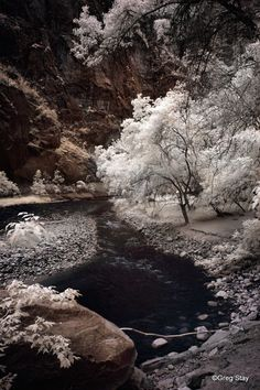 Virgin River Infrared Fine Art Photography by GregStayPhotography