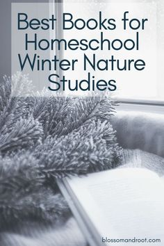 These are our favorite books to use for WINTER nature studies - blossom and root homeschooling, secular homeschooling, nature schooling, nature study, waldorf, charlotte mason, wildschooling, forest school #homeschooling #secular #naturestudy #blossomandroot Forest School Activities, Winter Activities, Stem Activities, Homeschooling First Grade, Homeschool Coop, Preschool Literacy, Homeschool Kindergarten, Study Ideas, Charlotte Mason