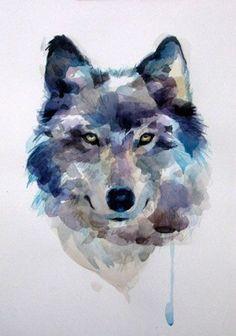 Lobo en colores azul y gris