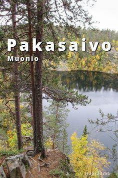 Travelling, Explore, Mountains, Nature, Naturaleza, Nature Illustration, Off Grid, Bergen, Exploring
