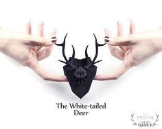 The Whitetailed Deer Mini Faux Taxidermy in by TheRogueAndTheWolf, $75.00