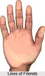 Lines of Friends, Palmistry