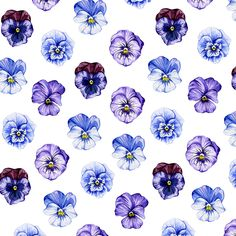 Sophie Brabbins is a freelance illustrator and surface pattern designer specialising watercolour illustrations and patterns. Watercolor Illustration, Floral Watercolor, Watercolour, Jackson Family, Floral Illustrations, Freelance Illustrator, Surface Pattern Design, Flower Crafts, Pansies
