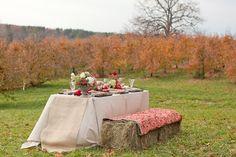 Google Image Result for http://1.bp.blogspot.com/-7zVZr4yAEsU/Tst6zwJhAfI/AAAAAAAAD40/iFiWKRdPzsY/s640/Thanksgiving_1.jpg