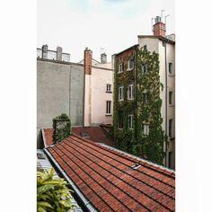 Me encantan las enredaderas #lyon #france #nature #city #urban #architecture #urbanexploration #urbanphotography #architecturephotography #street #streetphotography #travel #sky #noclouds #creepers #chimney #roof #building