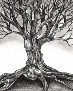Gnarly tree drawing