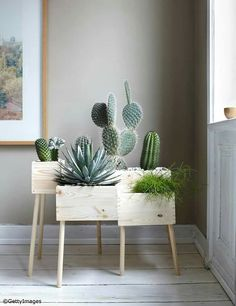 DIY: Blumenkasten aus Holz selber machen - Bild 13 - Cactus dans caisse de vin More More You are in the right place about cute office decor small Wooden Flower Boxes, Plantas Indoor, Deco Nature, Deco Floral, Room Tiles, Cactus Y Suculentas, Home And Deco, Cacti And Succulents, Cacti Garden