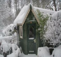 snow covered green cottage