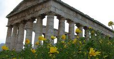 Η πολιτεία έδωσε άδεια ίδρυσης λατρευτικού χώρου, στην Αθήνα, στην Ελληνική εθνική Θρησκεία και το δικαίωμα της τέλεσης Γάμων με πλήρη νομική ισχύ. Διαβάστε: http://iliastpromitheas.blogspot.gr/2017/04/blog-post_13.html