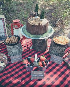 Lumber jack birthday cake and dessert table.