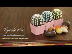 Cactus fantasía amigurumi tejidos a crochet