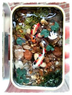 Check out this item in my Etsy shop https://www.etsy.com/listing/232932022/dolls-house-miniature-fish-pond-in-a-tin
