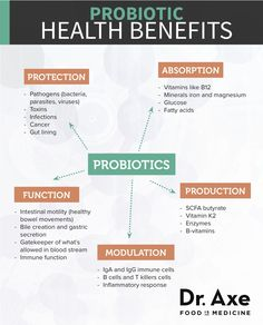 Everyone should be eating probiotic rich foods and supplementing with probiotics -- Probiotic Health Benefits Diagram Best Probiotic, Probiotic Foods, Fermented Foods, Probiotic Supplements, Natural Supplements, Gut Health, Health Tips, Health Zone, Colon Health