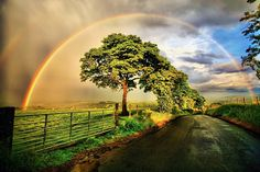 After the Storm, Louisville, Kentucky  photo via simply