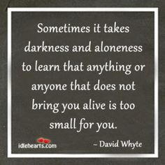 Sometimes it takes darkness and aloneness to learn that anything or anyone that does not bring you alive is too small for you. - David Whyte