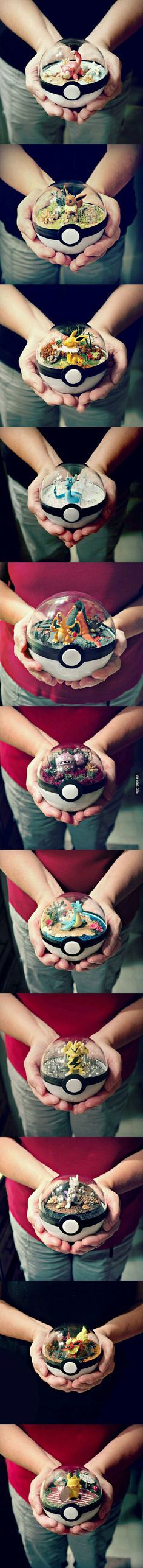 Pokemon Terrarium. You know you want it