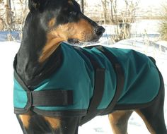 Extra durable 1000D Winter Dog Coat size 25  by COZYHORSE on Etsy